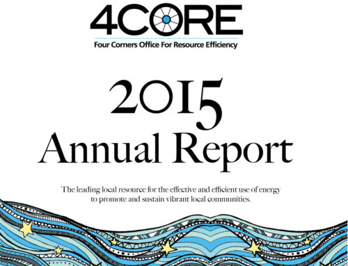 Non-profit Annual Reports