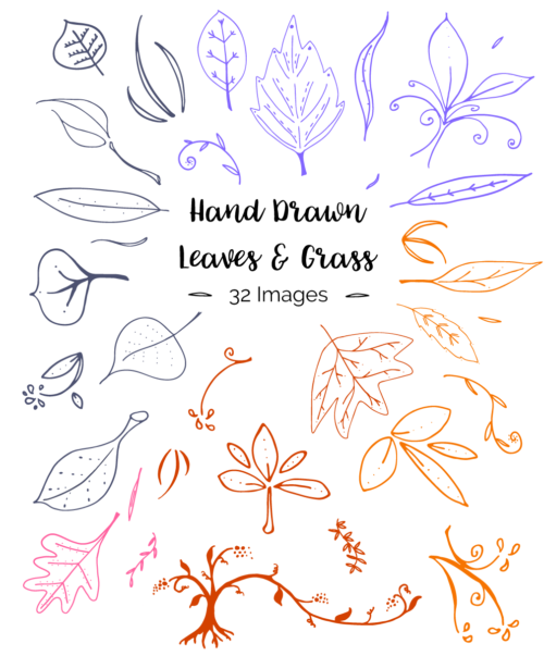 Hand Drawn Leaves